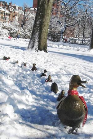 "Boston Public Garden, ""Make Way for Ducklings"" by Nancy Schon"