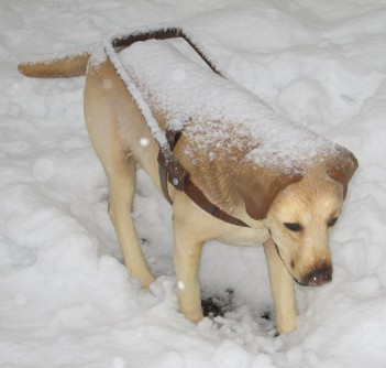 service dog statue in February snow