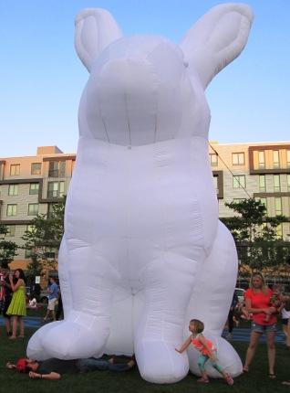 big bunnies 038