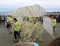 Strandbeests moving on Crane Beach