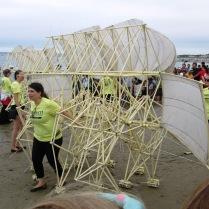 Strandbeests moving on Crane Beach
