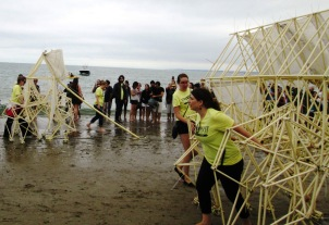 both strandbeests on Crane Beach