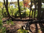 """""""Current,"""" created by Provincetown artist Frank Vasello, creates a river of sticks moving down a hill near the Spy Pond Park playground."""