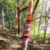 """With so many people working on the project, she """"named each of the trees in the installation in order to maintain an order. I wanted a variety of sizes of trees, and I chose certain trees in the grove and had each tree group work on that tree's diameter."""