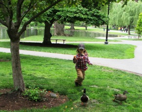 Child with live ducks in Boston Public Garden