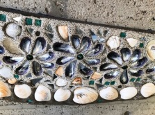 IMG_4853 marshland shells