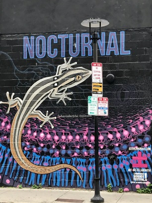 visit to Nocturnal Gecko mural, June 2018