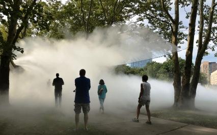 IMG_6446 fog x canopy