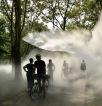 IMG_6456 fog x canopy