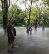 Fog x Canopy