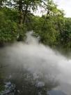 Fog x Island