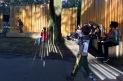 IMG_6683 Autumn tap dance