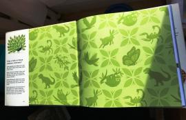 End paper front flap